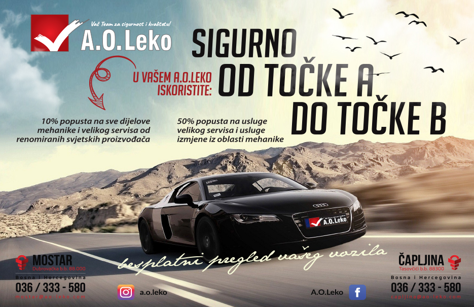 Ao-leko web jan2018